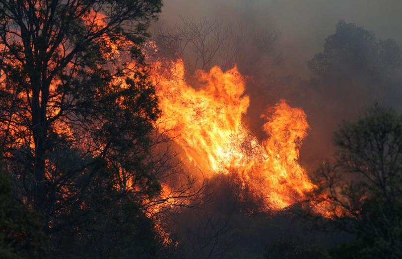 ออสเตรเลียเผชิญ 'ไฟป่า' กว่า 100 จุดในภาคตะวันออก บ้านเรือนถูกเผาวอดกว่า 20 หลัง