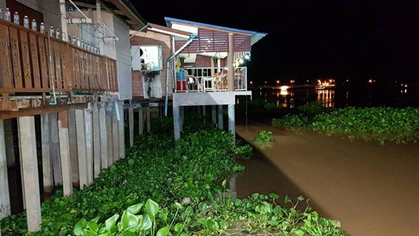 ชาวชัยนาทหวั่นน้ำท่วมบ้าน หลังแม่น้ำเจ้าพระยาสูงขึ้นต่อเนื่อง