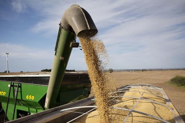 """จีนแย้ม! กำลังศึกษาการซื้อสินค้าเกษตรสหรัฐฯ รวม """"เนื้อหมู-ถั่วเหลือง"""" ด้วย"""
