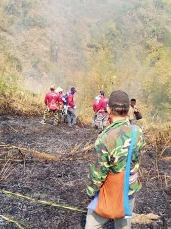อุทาหรณ์มือเผาป่าก่อหมอกควัน-ฝุ่นพิษ ศาลฯเชียงรายทยอยตัดสินทั้งปรับ-จำคุก-รออาญา