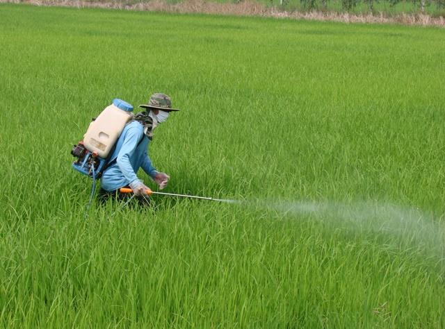 จับตาแบนสารพิษเกษตร! ไบโอไทยเตรียมร่วมประชุมสภา ชี้ตัวอย่างจากยุโรป
