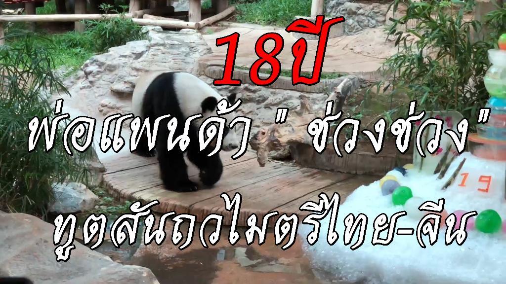 """18 ปี พ่อแพนด้า """"ช่วงช่วง"""" ทูตสันถวไมตรีไทย-จีน"""