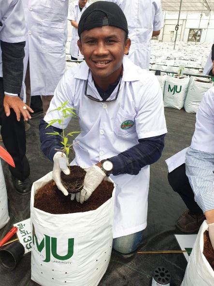 บัวขาว ยิ้มหวาน! ลงดินปลูกกัญชา 12,000 ต้นที่แม่โจ้