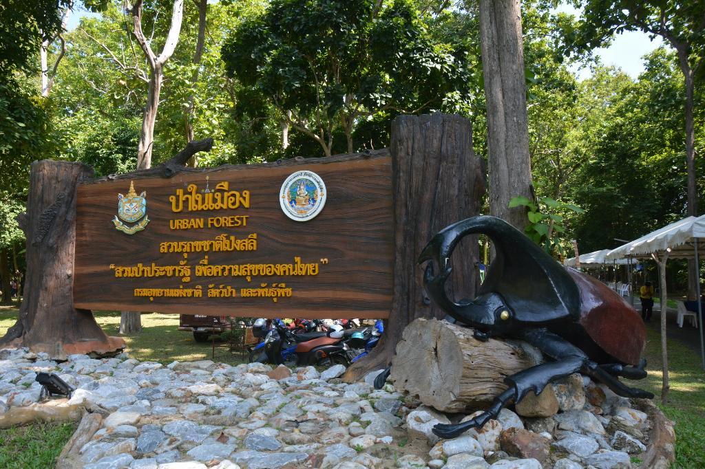 เชียร์สนั่นสังเวียน!สบอ.15 เปิดสวนป่าฯตั้งกลอนชนกว่างนักสู้แห่งขุนเขาล้านนา