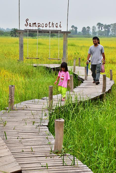 ทางเดินบนสะพานไม้