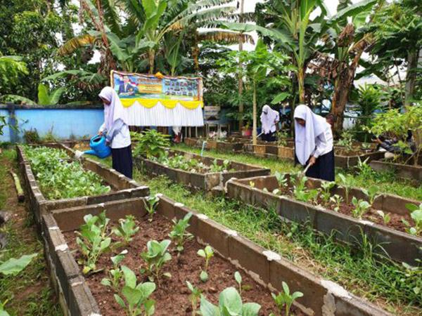 """""""ครัวโรงเรียนสู่ครัวบ้าน"""" โครงการนำร่องผู้นำทางการเกษตรของ 5 จังหวัดชายแดนภาคใต้"""