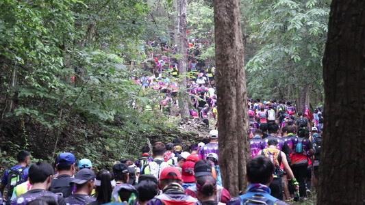 นักวิ่งกว่าพันคนร่วมวิ่งพิชิตภูกระดึง ททท.มั่นใจช่วยปลุกกระแสนักท่องเที่ยวขึ้นภูเพิ่ม