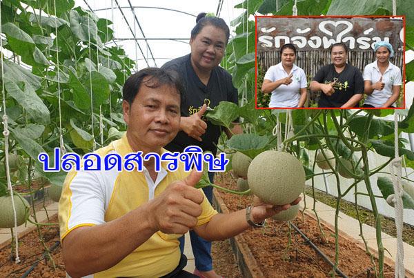 """โคราชรุกหนัก! หนุนเกษตรปลอดภัยเลิกใช้สารเคมี ชู""""รักจังฟาร์ม""""สวนเมล่อนปลอดสารพิษนำร่องอีสานใต้"""