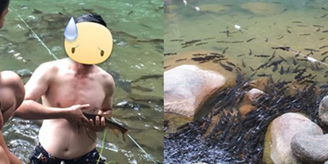 ทำลายธรรมชาติ! นักท่องเที่ยวจับปลาพลวงหินถ่ายรูปเล่น ไม่สนกฏระเบียบ