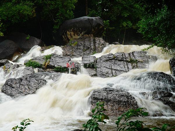 ปภ.พัทลุง สั่งเฝ้าระวังน้ำป่าไหลหลาก และน้ำท่วมขัง หลังฝนตกต่อเนื่องมา 3 วัน