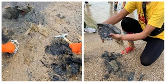 """วิกฤตใหม่! """"ทรายเน่า"""" จากถุงพลาสติกฝังใต้ชายหาด ย้ำ ทะเลไทยไม่สามารถรับถุงเพิ่มได้อีกแล้ว"""