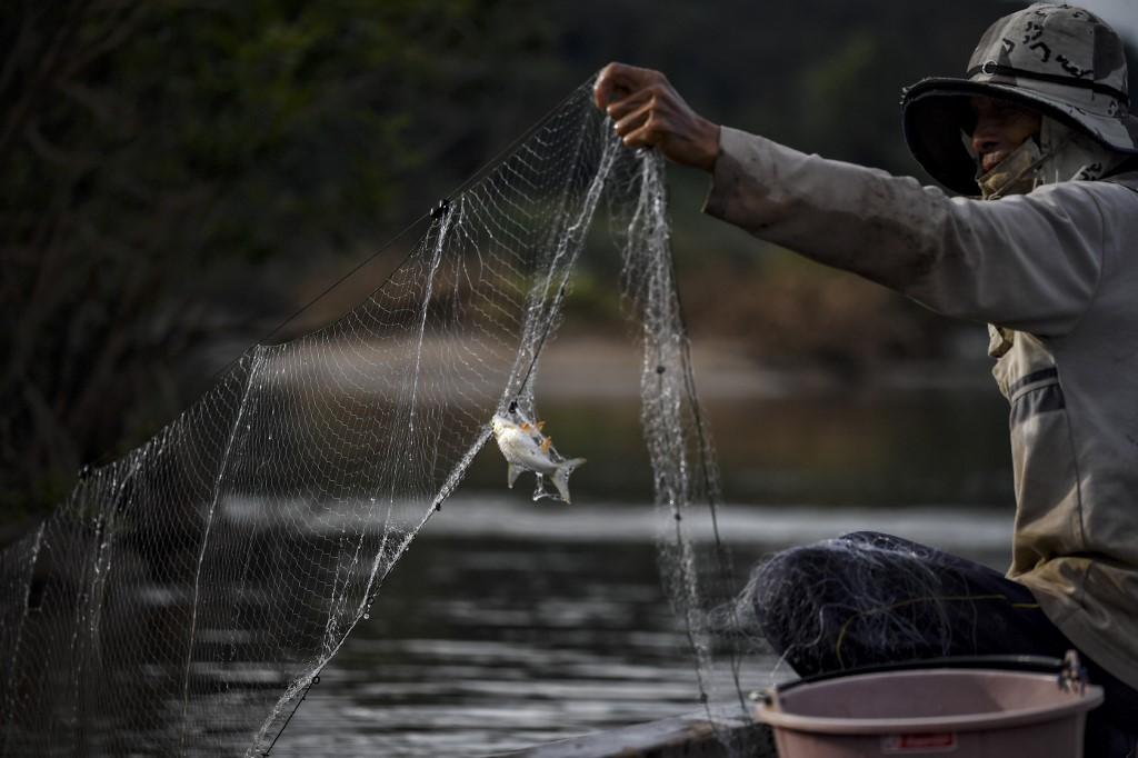 ชาวประมงจับปลาในแม่น้ำโขง บริเวณ อ.สังคม จ.หนองคาย  (LILLIAN SUWANRUMPHA / AFP)