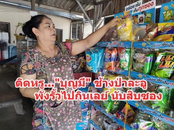 ช้างป่าละอู อาละวาดหนัก!!พังประตูบ้าน- กินเลย์ ร้านค้าข้างทาง