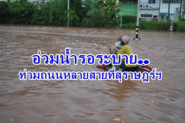 สุราษฎร์ฯ ฝนตกหนักทำน้ำท่วมถนนหลายสาย