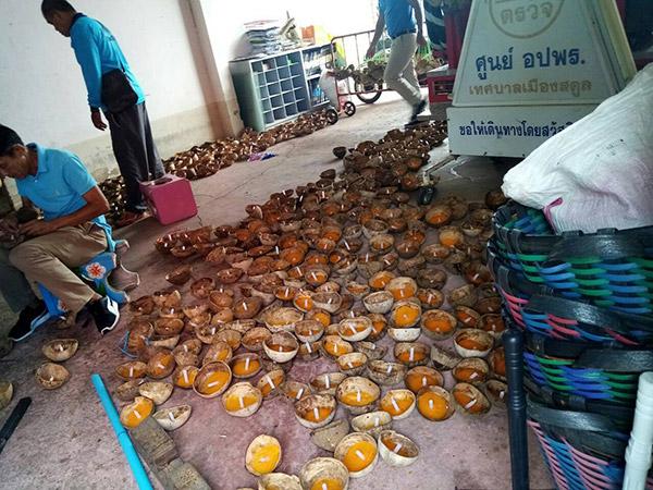 ทม.สตูล เร่งมือทำกระทงจากกะลามะพร้าวนับพันลูก กระตุ้นใช้วัสดุธรรมชาติรักษ์โลก