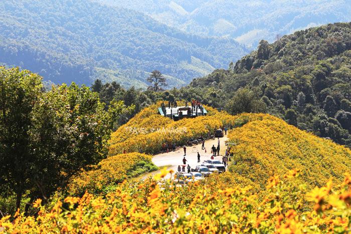 ชมดอกไม้และชมวิวภูเขาสลับซับซ้อนของแม่ฮ่องสอน (แฟ้มภาพ)