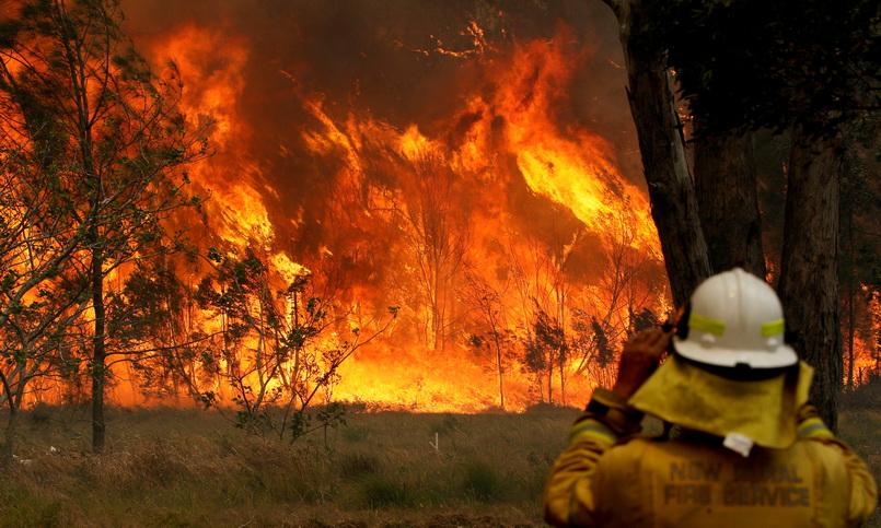 2 รัฐออสเตรเลียประกาศ 'ภาวะฉุกเฉินไฟป่า' ยกระดับเตือนภัย 'ซิดนีย์' ถึงขั้นหายนะ