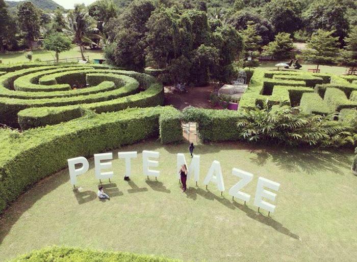 พิชญ์เขาวงกต (Pete Maze)