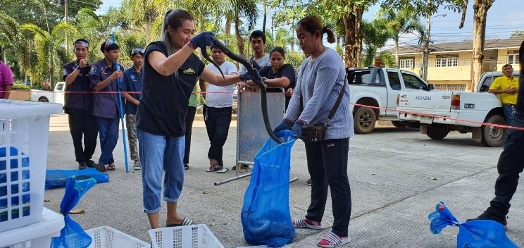 จับอีก! ขบวนการค้าสัตว์ข้ามชาติส่งขายประเทศเพื่อนบ้าน ทำเมนูเปิบพิสดาร