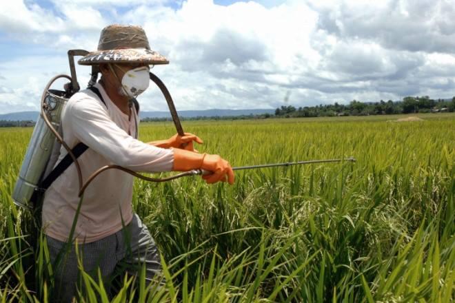 ไบโอไทย เผย ก.เกษตร จ่อยืดเวลาแบนสารเคมีออกไป 6 เดือน