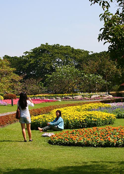 สวนหลวง ร.๙ มีหลากหลายมุมให้เลือกถ่ายรูป