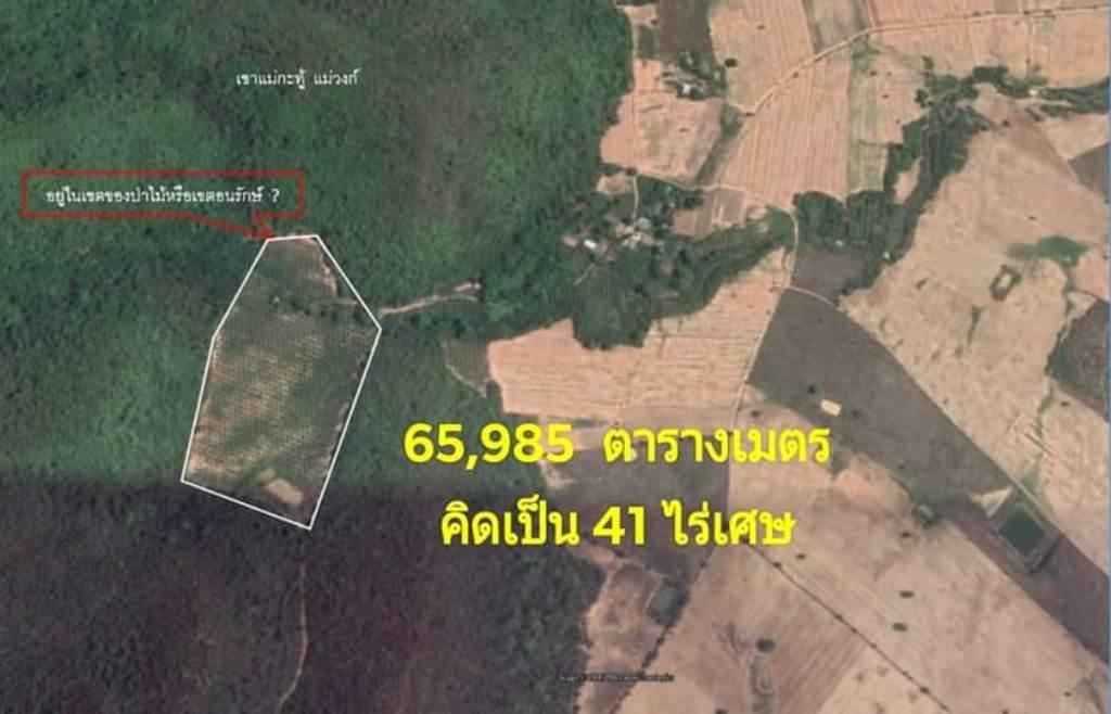 """กลุ่มอนุรักษ์ชี้เป้าป่าไม้บุกตรวจ""""ป่าแหว่งแม่วงก์""""พบนักการเมืองท้องถิ่นถือ ส.ป.ก.ทำกิน"""