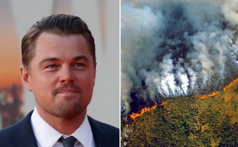 สุดอึ้ง!! ผู้นำบราซิลจวกพระเอกดัง 'ลีโอนาร์โด' บริจาคเงินให้พวกลักลอบเผา 'ป่าแอมะซอน'