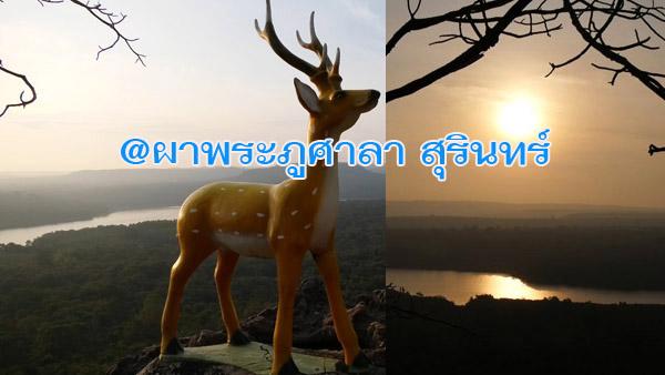 ฟินมาก...สัมผัสลมหนาวชมอาทิตย์ขึ้นท่ามกลางสายหมอก @ผาพระภูศาลา ชายแดนไทย-กัมพูชา
