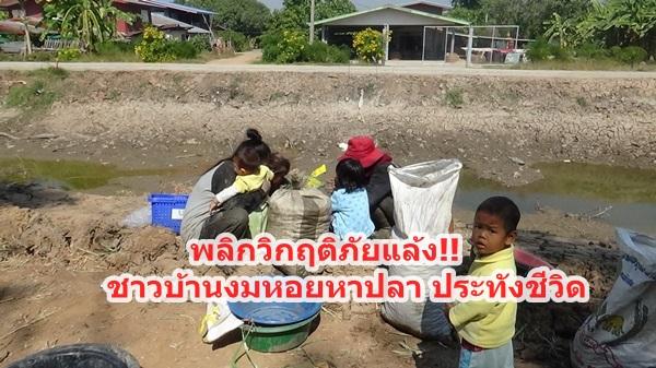 ชาวบ้านพลิกวิกฤตให้เป็นโอกาส งมหอย หาปลาสู้ภัยแล้ง