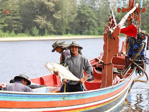 ชาวประมงนราฯ เริ่มทยอยนำเรือออกหาปลาหลังฝนทิ้งช่วง