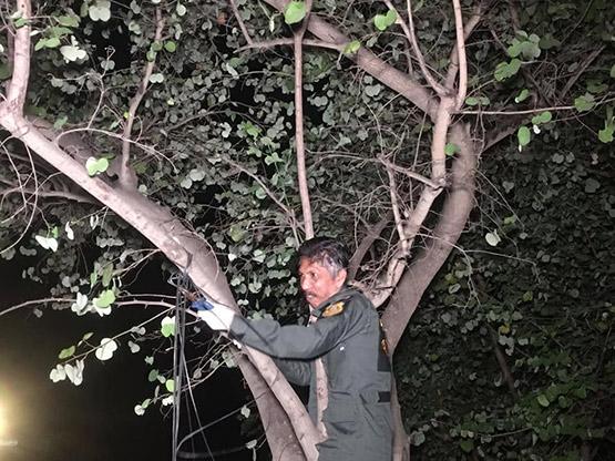 หนุ่มเครียดจัดคิดสั้นผูกคอตายใต้ต้นไม้หน้าหมู่บ้านหรู ย่านบางเขน