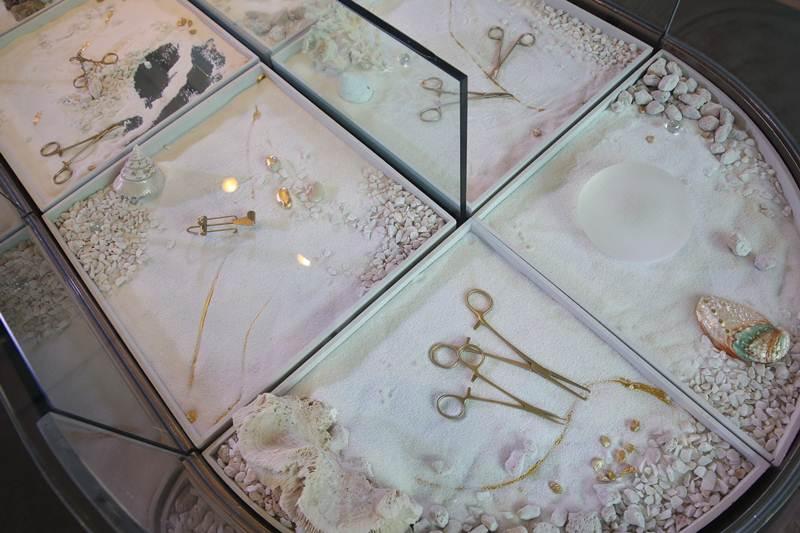 ผลงานศิลปะที่นำเครื่องมือศัลยกรรมมาจัดแสดงในงานเปิดตัว AMED (เอเมด) สาขาซีทีกรีน พระราม 9