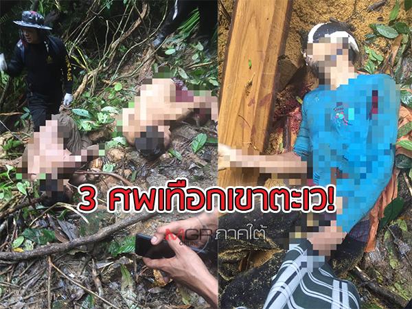 เผยภาพล่าสุดเหตุการณ์ยิง 3 ศพบนเทือกเขาตะเว ชาวบ้านยันผู้เสียชีวิตมีอาชีพรับจ้างตัด-ขนไม้