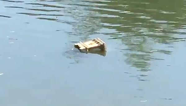 ชาวบ้านแตกตื่นพบโลงศพลอยน้ำกลางแม่น้ำเพชร