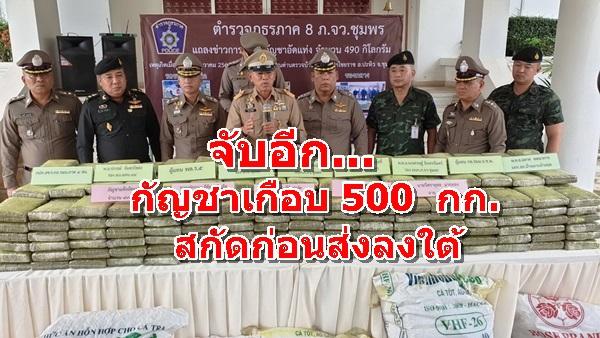 """รวบ """"สมชาย เกตุศรี"""" แก๊งยาเสพติดขนกัญญาเกือบ 500 กก ลงใต้ เพิ่งพ้นโทษคดียาเสพติด ไม่เข็ดหลาบทำซ้ำอีก"""