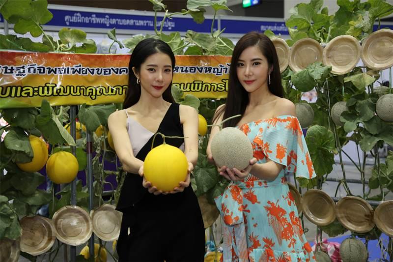 สภาสังคมสงเคราะห์แห่งประเทศไทย ในพระบรมราชูปถัมภ์ร่วมสร้างโอกาสและส่งเสริมอาชีพคนพิการ