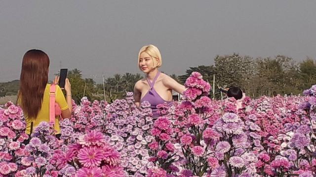 """แรงไม่หยุด!ถึงคิว""""ดีเจโซดา""""ควงช่างภาพเกาหลีถ่ายภาพสุดเซ็กซี่กลางทุ่งดอกไม้แม่ริม"""
