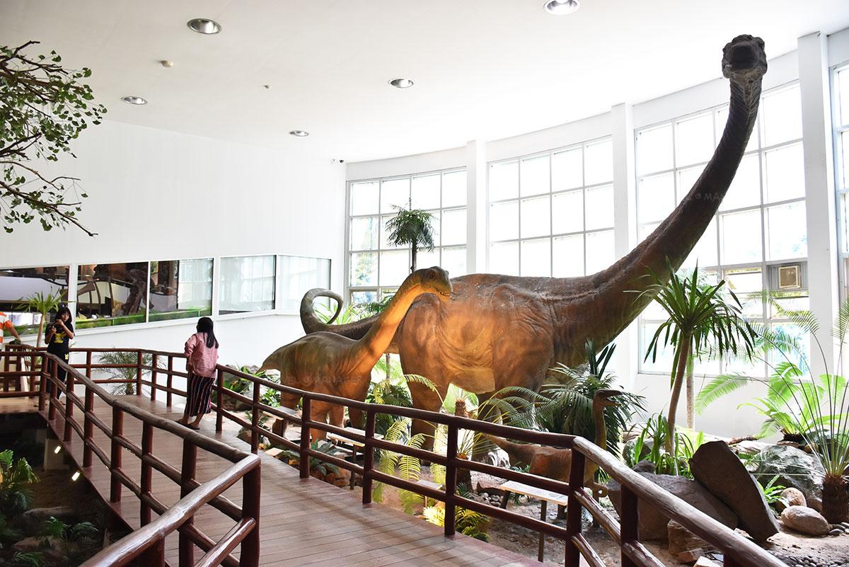 ไดโนเสาร์กินพืชภูเวียง โกซอรัส