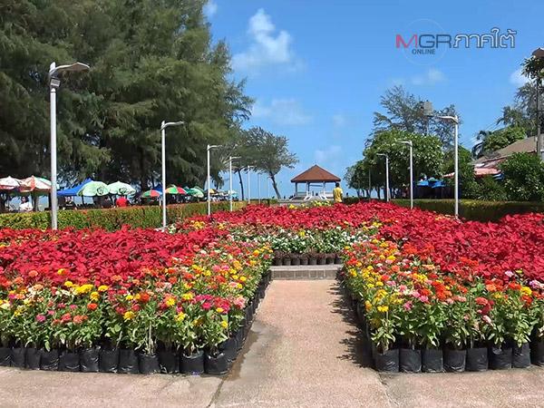 เนรมิตสวนดอกไม้หลากสีบริเวณชายหาดแหลมสมิหลา ต้อนรับนักท่องเที่ยวช่วงปีใหม่