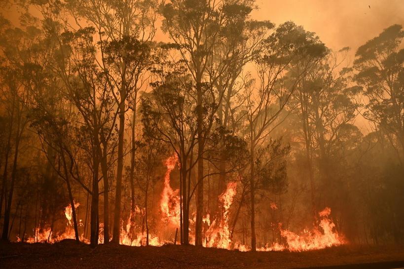 ออสเตรเลียส่งทหารกองหนุน 3,000 นายสกัดไฟป่า-อพยพคนนับแสน