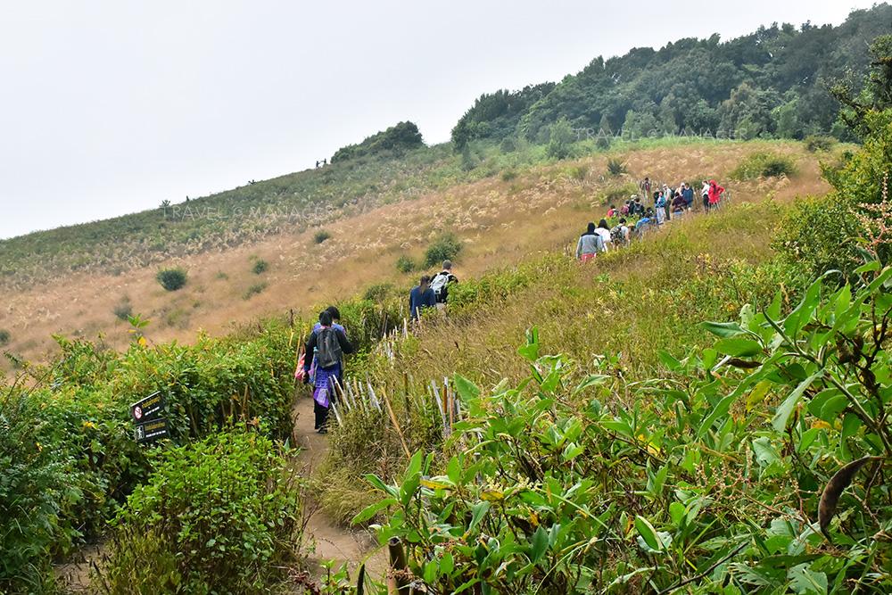 นักท่องเที่ยวต่างพากันมาเดินศึกษาเส้นทาง