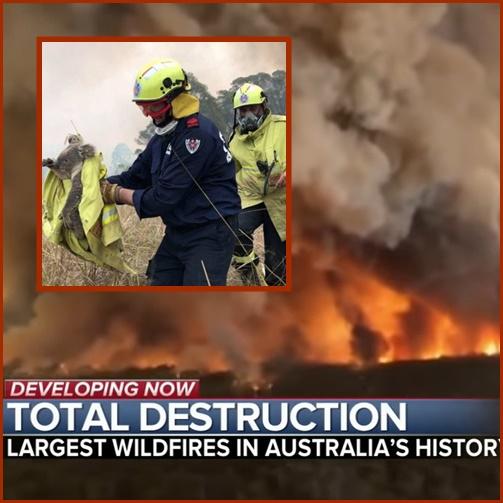 "In Clip: สนง.จัดการฉุกเฉินออสซี"" สั่งปิดที่ตั้งในแคนเบอร์ราชั่วคราว เหตุไฟป่าทำคุณภาพอากาศเลวร้าย – สัตว์ป่า 480 ล้านตัวเสียชีวิต"