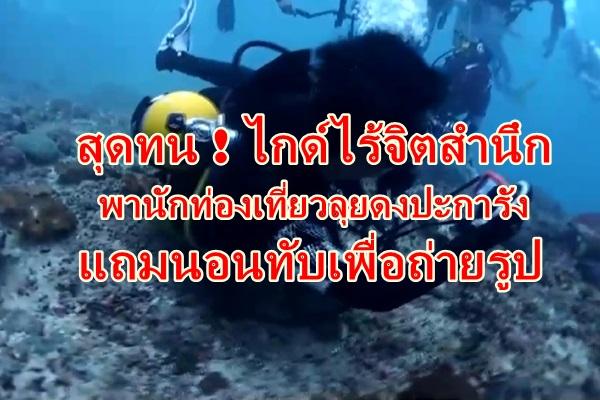 สุดทน ! พฤติกรรมไกด์สุดแสบ นำนักท่องเที่ยวนอนทับปะการังถ่ายรูป