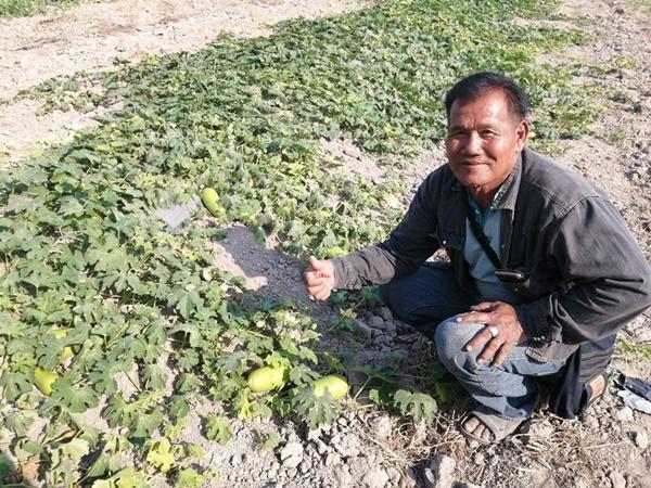 เกษตรกรอุ่นใจ ...ฟาร์มสุกรปันน้ำช่วยบรรเทาวิกฤตภัยแล้ง