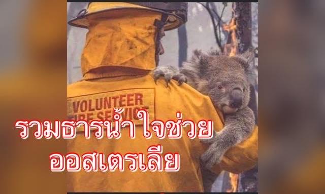 รวมช่องทาง บริจาคช่วยเหตุการณ์ไฟป่าลุกไหม้ในออสเตรเลีย