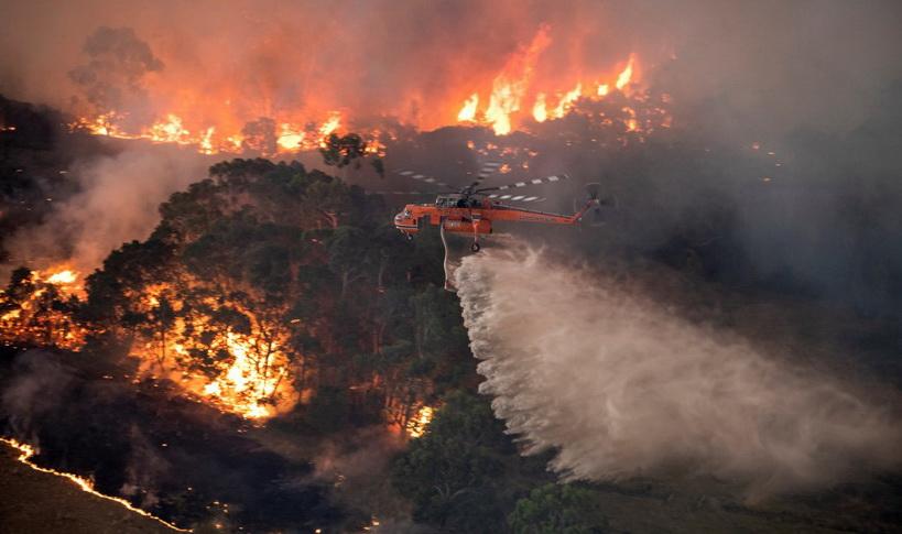 Weekend Focus: วิกฤตไฟป่าล้างผลาญ 'ออสเตรเลีย' สัญญาณเตือนมหันตภัยโลกร้อน