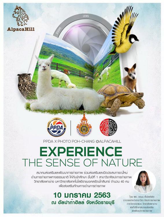 """สมาคมส่งเสริมและพัฒนาการถ่ายภาพ จัด PPDA X Photo Poh-Chang @AlpacaHill """"Experience the Sense of Nature"""""""