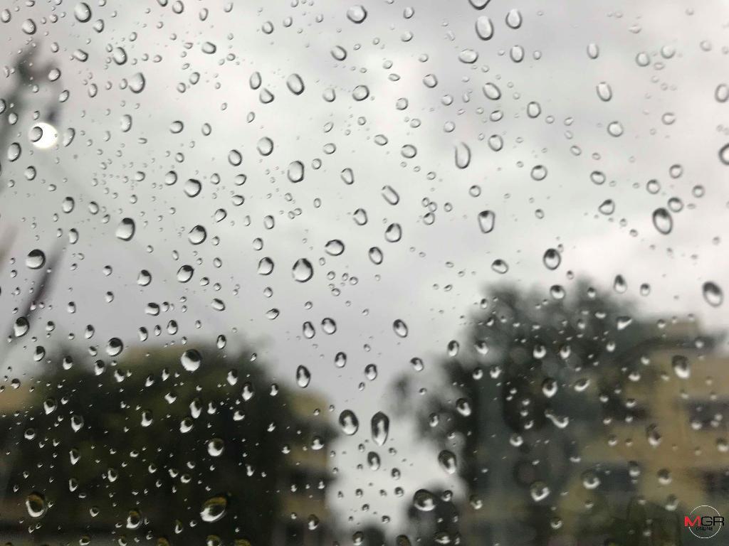 ฝนฟ้าคะนอง! ตะวันออก-กลาง-กทม. ร้อยละ 10 เหนือ-อีสาน ยังหนาวถึงหนาวจัด-หมอกหนา