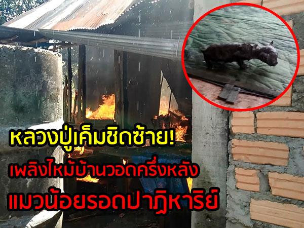 หลวงปู่เค็มชิดซ้าย! ไฟไหม้บ้านวอดครึ่งหลังแต่แมวน้อยเดินออกจากกองเพลิงรอดปาฏิหาริย์