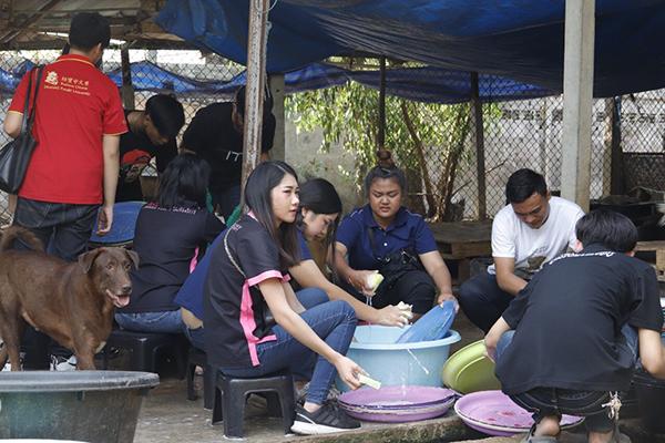 TSPCA พร้อมอาสาสมัคร ร่วมพัฒนาบ้านพักพิงสุนัข จ.ชลบุรี